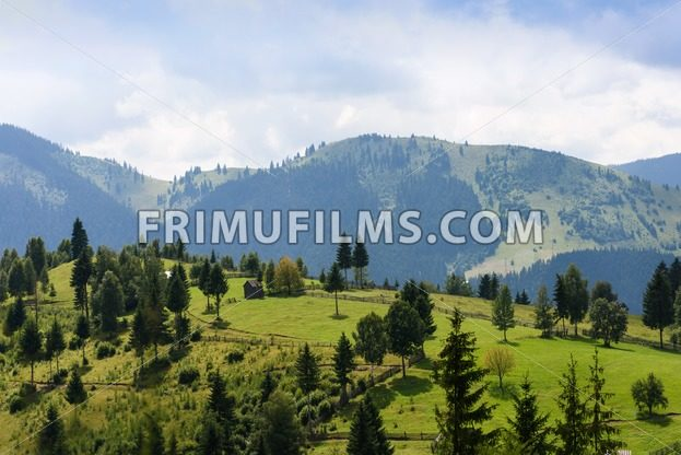 Mountain landscape in bucovina with green fields - frimufilms.com