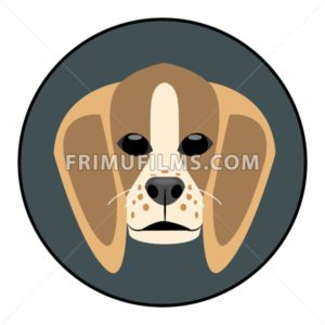 Digital vector beagle dog face, in dark silver circle, flat style - frimufilms.com