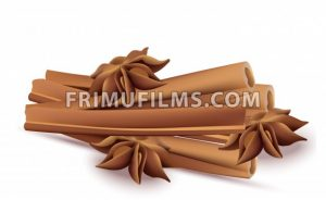 Cinnamon sticks and anise stars Vectos isolated on white background - frimufilms.com