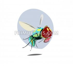 Digital vector funny comic cartoon colored sad fly insect close up, open mouth,  hand drawn illustration, abstract realistic flat style - frimufilms.com
