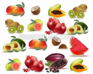 Fruits avocado, papaya, kiwi, pomegranate, fresh cocoa guava Collection set Vector illustration - frimufilms.com