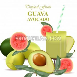 Guava and avocado fruits realistic Vector isolated on white background - frimufilms.com