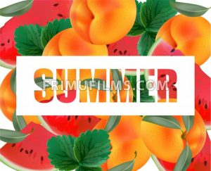 Summer appricot and watermelon background pattern Vector illustration - frimufilms.com