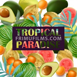 Tropical Paradise fruits avocado, papaya, gooseberry palm leaves - frimufilms.com