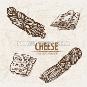 Digital vector detailed line art braid, sliced cheese with holes hand drawn retro illustration collection set. Thin artistic pencil outline. Vintage ink flat, engraved mill doodle sketches. Isolated - frimufilms.com