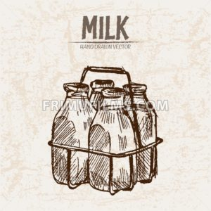 Digital vector detailed line art milk in glass bottles with holder hand drawn retro illustration collection set. Thin artistic pencil outline. Vintage ink flat, engraved mill doodle sketches. Isolated - frimufilms.com