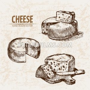 Digital vector detailed line art sliced cheese with holes hand drawn retro illustration collection set. Thin artistic pencil outline. Vintage ink flat, engraved mill doodle sketches. Isolated - frimufilms.com