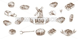Digital vector detailed line art baked bread and dried wheat hand drawn retro illustration collection set. Thin artistic pencil outline. Vintage ink flat, engraved simple doodle sketches. Isolated - frimufilms.com