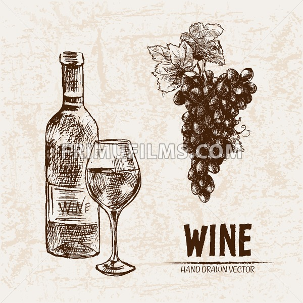 Digital Vector Detailed Line Art Wine Bottle And Wineglass Hand Drawn Retro Illustration Collection Set