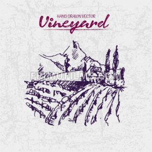 Digital color vector detailed line art purple vineyard fields on mountains background hand drawn illustration set. Thin artistic pencil outline. Vintage ink flat, engraved doodle sketches. Isolated - frimufilms.com