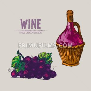 Digital vector detailed line art wine pitcher and grape bunch hand drawn retro illustration collection set. Thin artistic pencil outline. Vintage ink flat, engraved design doodle sketches. Isolated - frimufilms.com