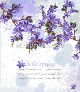 Hello spring card with purple flowers Vector. Beautifull decor - frimufilms.com