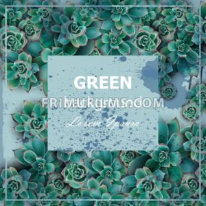 Succulent stars Green background Vector. Beautiful card floral design - frimufilms.com