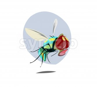 Digital vector funny comic cartoon colored sad fly insect close up, open mouth,  hand drawn illustration, abstract realistic flat style Stock Vector