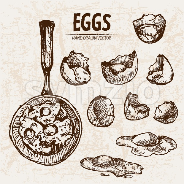 Digital vector detailed line art cooking eggs in frying pan hand drawn retro illustration collection set. Thin artistic pencil outline. Vintage ink Stock Vector