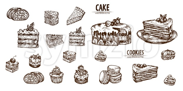 Digital vector detailed line art sliced cake and cupcakes hand drawn retro illustration collection set. Thin artistic pencil outline. Vintage ink Stock Vector