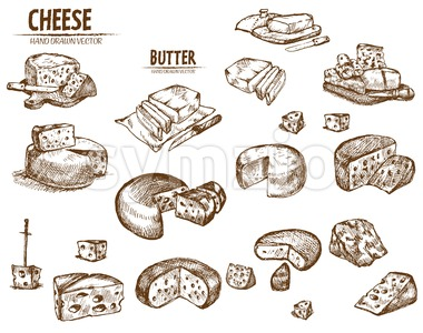 Digital vector detailed line art sliced cheese with holes and butter hand drawn retro illustration collection set. Thin artistic pencil outline. Stock Vector