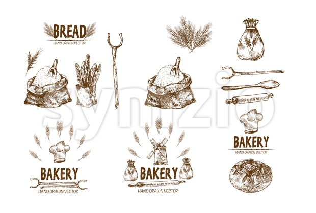 Digital vector detailed line art baked bread and dried wheat hand drawn retro illustration collection set. Thin artistic pencil outline. Vintage ink Stock Photo