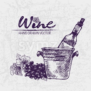 Digital color vector detailed line art wine bottle in ice bucket and black grape bunch with leaves hand drawn illustration set. Thin outline. Vintage Stock Vector
