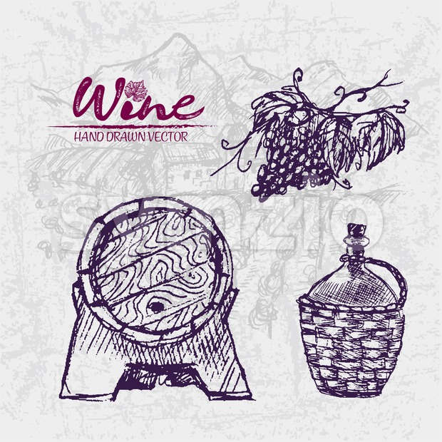 Digital color vector detailed line art wooden wine barrel with tap, old pitcher and grape bunch hand drawn retro illustration set. Thin outline. Stock Vector