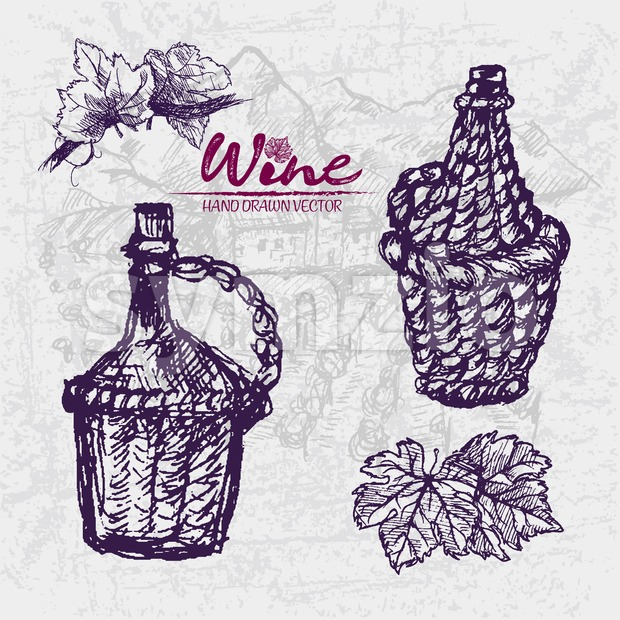 Digital color vector detailed line art wine old ancient braided pitchers, leaves hand drawn retro illustration set. Thin pencil outline. Vintage ink Stock Vector