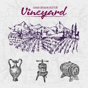 Digital color vector detailed line art purple wooden wine barrel, pitcher and wine press hand drawn illustration set. Thin outline. Vintage ink flat, Stock Vector