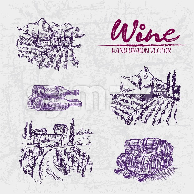 Digital color vector detailed line art purple vineyard fields, wine and barrels stacked hand drawn illustration set. Thin artistic pencil outline. Stock Vector