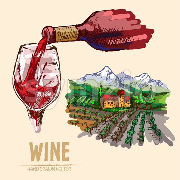 Digital vector detailed line art pouring wine and vineyard hand drawn retro illustration collection set. Thin artistic pencil outline. Vintage ...