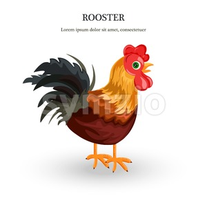Rooster Vector detailed illustration. colorful cartoon character Stock Vector