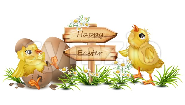 Easter card with cute Chicken Vector. cracked eggs, wooden sign, place for text Stock Vector
