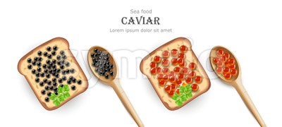 Caviar Vector realistic. Red and black caviar toasts. Top view 3d detailed illustration Stock Vector