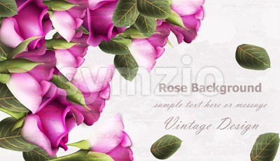 Vintage roses background Vector. Grunge texture layout Stock Vector