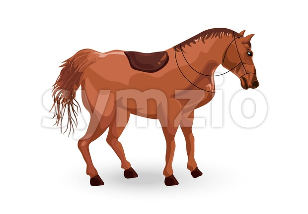 Horse isolated Vector. Elegant Detailed animal illustration Stock Vector