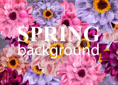 Vintage Spring background with colorful daisy flowers. Vector illustration Stock Vector